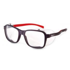Gafas De Protección Incolora 2009 Europa Pegaso